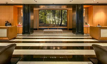 Adrian Houston london luxury photographer- Rosewood Artwork
