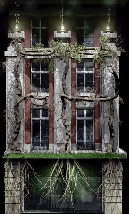 Luxury Fine Photography - Tree Time Lapse by Photographer Adrian Houston